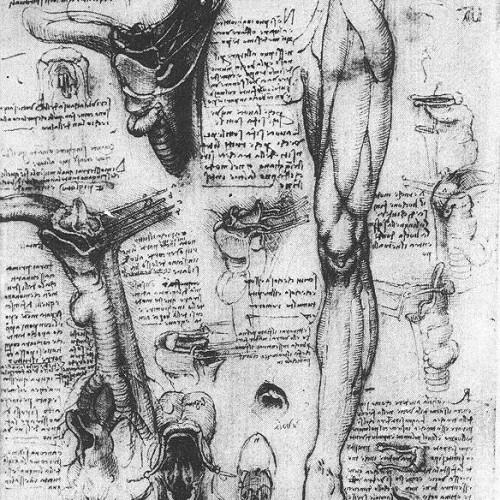 Léonard de Vinci et les mots de la peinture en Europe : sources et réception