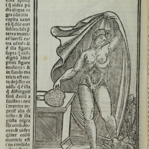 Représenter le sexe féminin, Images et imaginaires XVIe-XXIe